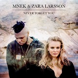 NEVER FORGET YOU (RMX 2015)